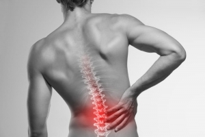 bol u leđima i homeopatija